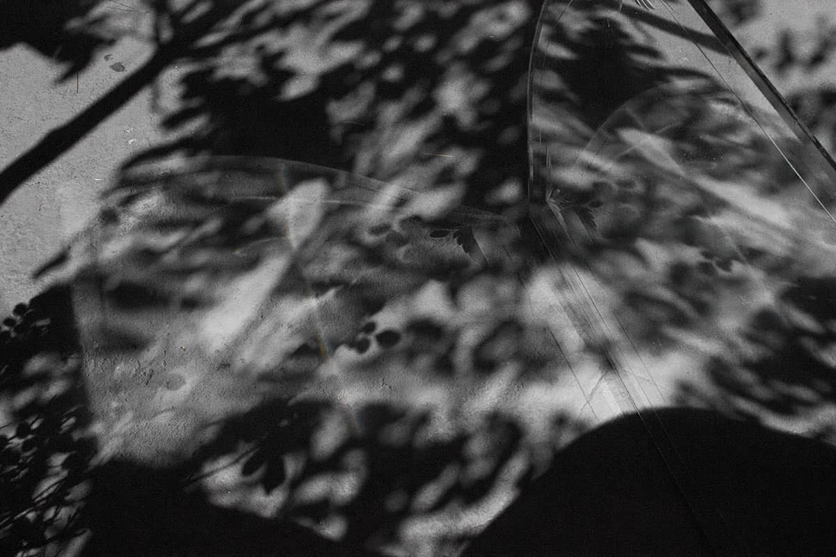 abstract black and white image with a dappled pattern.