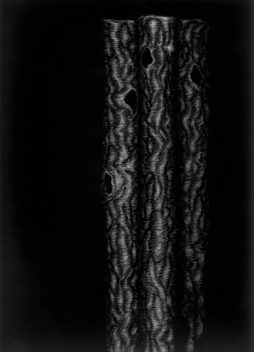 drawing of three abstracted branches in white on black paper