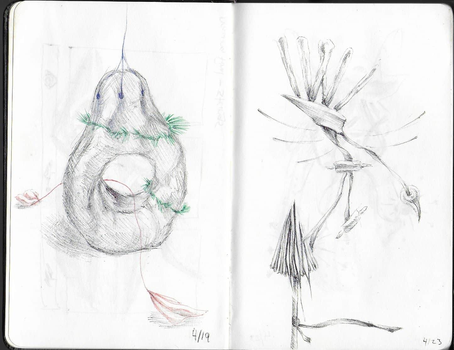 drawing of natural forms, that seem to have been tied together and arranged. On the left page they have been turned into an ornament, on the right a birdlike creature
